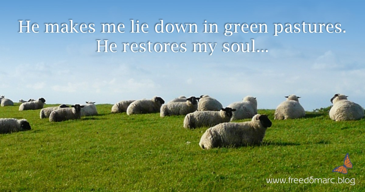 20. Meditating on Psalm 23