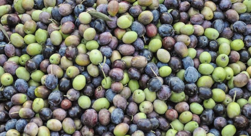 olives-1307154_1280