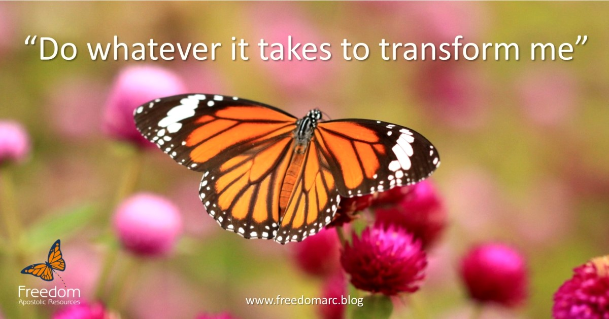 139. Declarations For Transformation