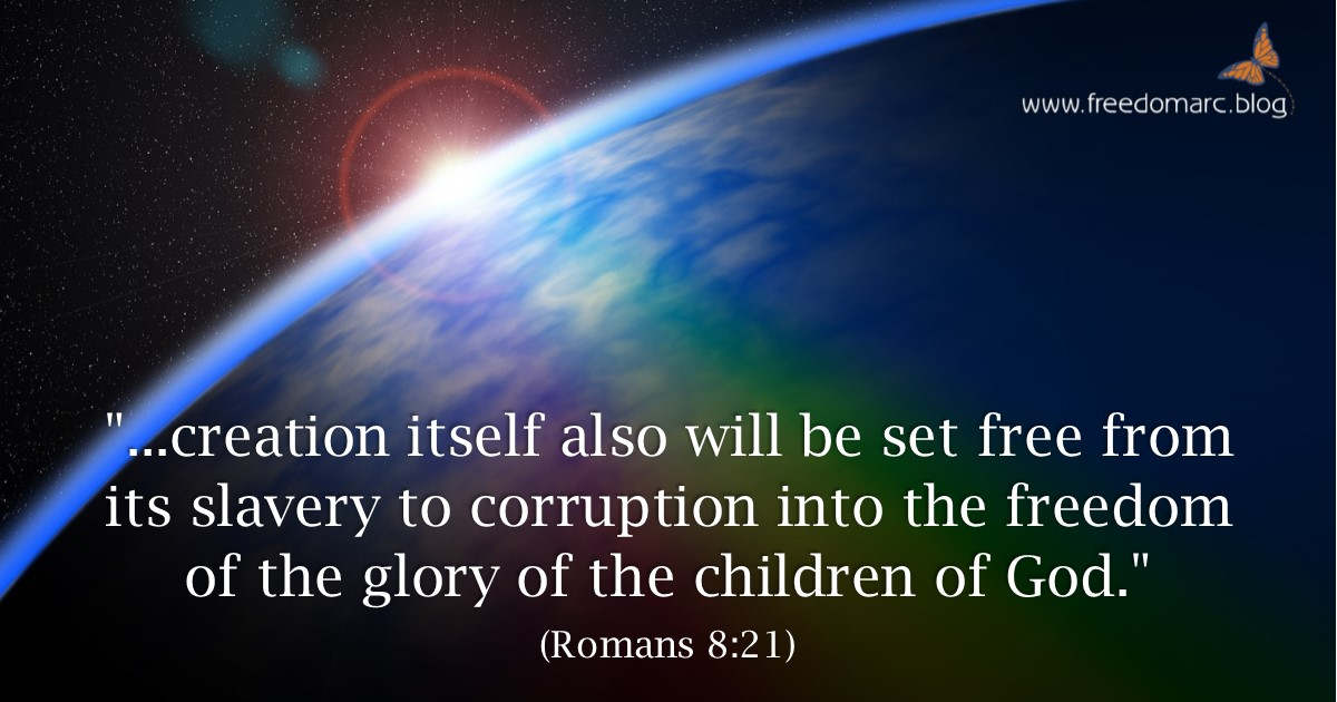 258. The Glory of the Children of God